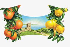 """Tomatdesign провели редизайн этикеток лимонадов ТМ """"Напитки из Черноголовки"""""""
