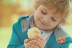 "Organic-promo от торговой марки ""Щедро"""