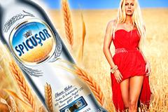 """Alexandrov Design House переделало бутылку для """"Spicusor"""""""