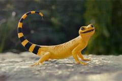 Как хвост у ящерицы