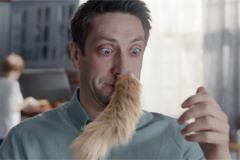Чихнуть котом