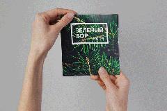 """Fabula Branding: фирменный стиль квартала """"Зеленый бор"""""""