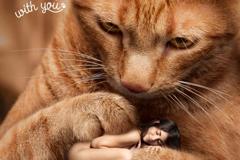 Защити животное