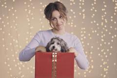 В качестве новогоднего подарка