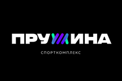 "Брендинг спортивного комплекса ""Пружина"""