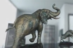 Cheil Russia привел слонов на рынок форекс-услуг