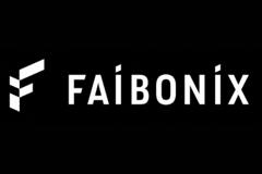 Faibonix - проект брендингового агентства Repina Branding