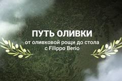 """Роуз"" и Filippo Berio приглашают в путешествие – ""По пути оливки: от оливковой рощи до стола"""