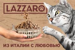 Style You: коммуникационная стратегия, кей вижуал и бренд-платформа для бренда премиальных кормов LAZZARO