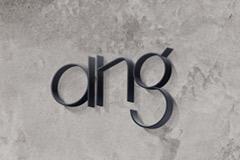 Serenity разработали бренд в сфере консалтинга ANG