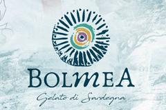 Дизайн упаковки мороженого Bolmea